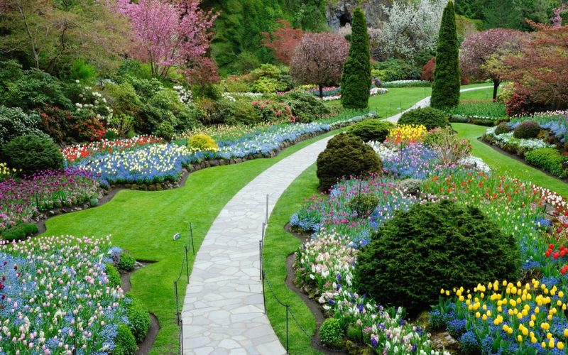 Simple Strategies For Low Maintenance and engaging Gardens Using Decorative Aggregates