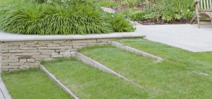 5 Ways to Create a Striking Front Yard