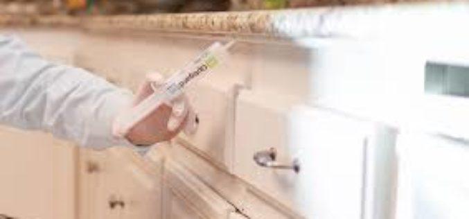 Safeguard Your Home with termite treatment Huntsville, AL